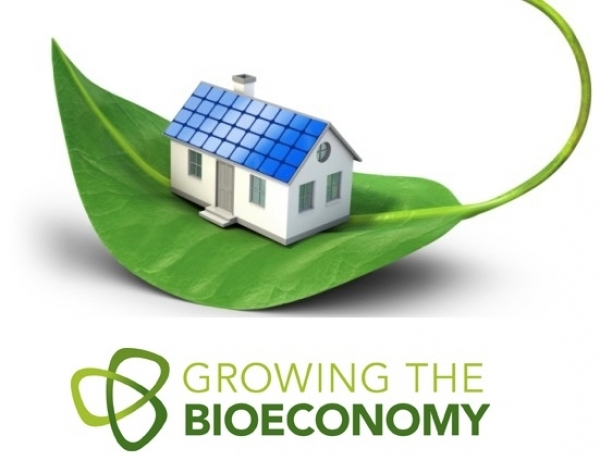 Bioeconomia 2