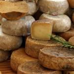 Embargo russo sui formaggi, l'Ue blocca gli aiuti a causa di richieste sproporzionate dall'Italia