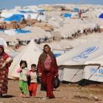 Rifugiati, Europarlamento: