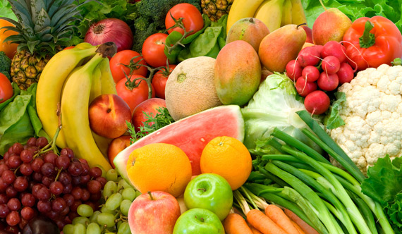 cibo nutrizione