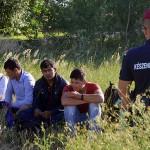 immigrati ungheria