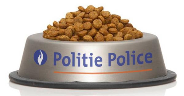 bruxelles gatti polizia