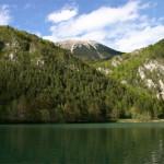 Gli Stati si impegnano per la protezione della biodiversità
