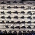 Comitato economico e sociale, legislazione su armi da fuoco sia più ambiziosa