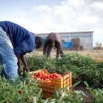 Migranti, sindacati Ue: