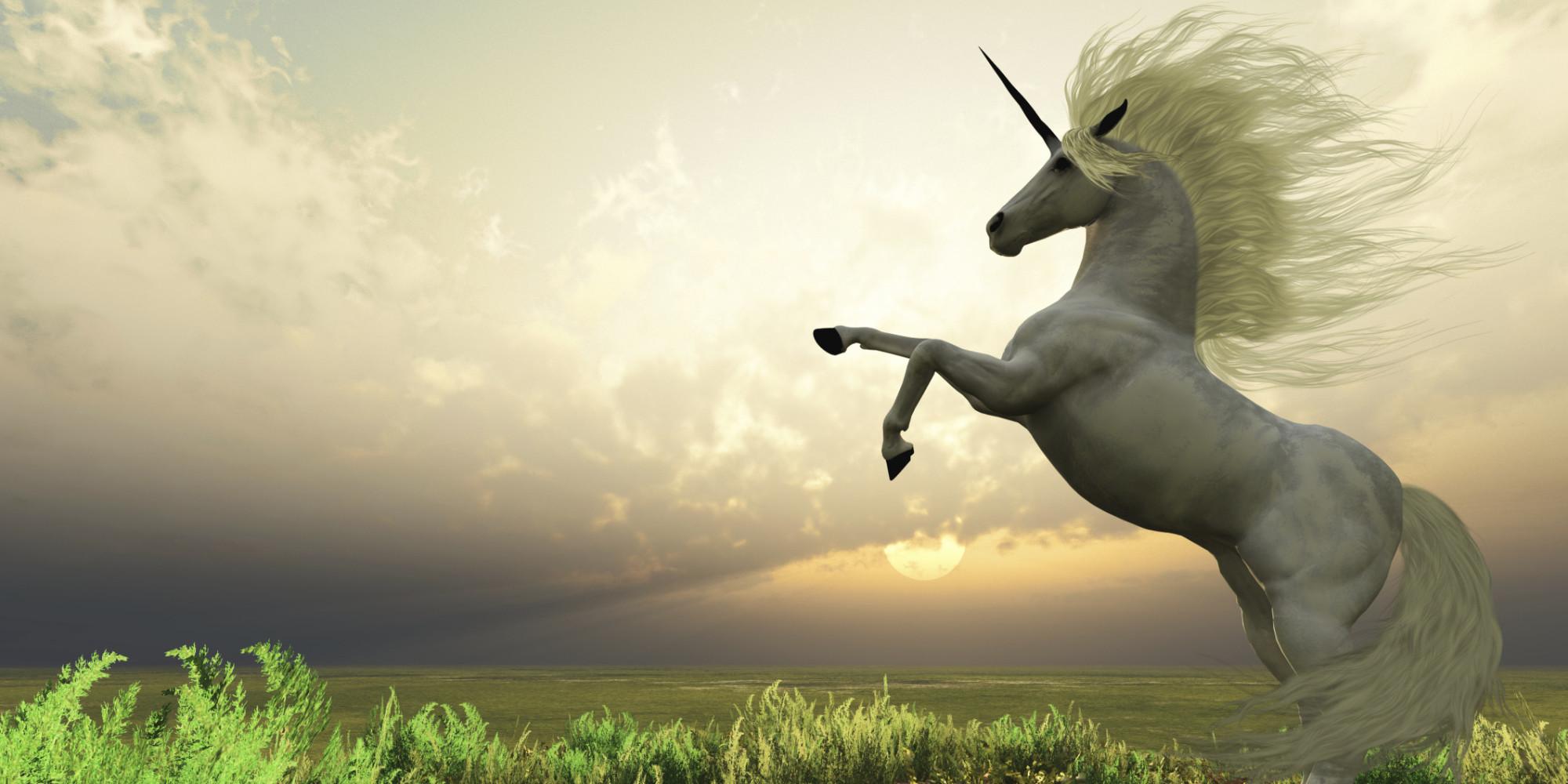 Risultati immagini per regno dei unicorni