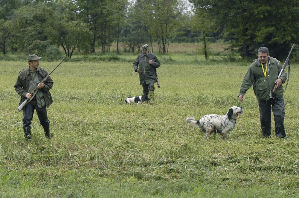 cacciatori sammarinesi