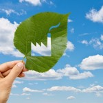 Italia ai primi posti nell'attuazione della Direttiva Ue sull'efficienza energetica