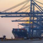 regolamento-servizi-portuali