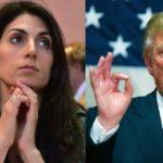 Virginia, the Donald e l'Ue: dis-affinità elettive