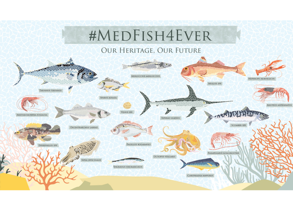 MedFish4Ever