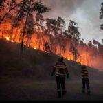 L'Ue in soccorso del Portogallo contro l'incendio che ha già fatto 62 vittime