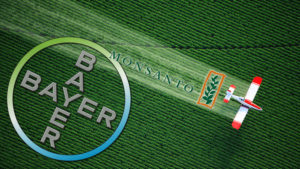 Bayer, Monsanto, fusione