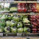 Da Bruxelles in arrivo nuove proposte per limitare l'uso della plastica