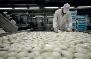 industria-alimentare-scordamaglia-bulgaria
