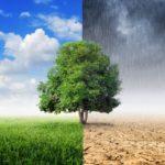 Eurobarometro: la difesa dell'ambiente è importante per 9 cittadini su 10