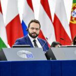 Castaldo: Dobbiamo lavorare con il PD, persino condividere lo stesso gruppo in Europa