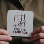 Evi (M5S), al via l'iniziativa per porre fine all'utilizzo delle gabbie negli allevamenti europei