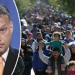 Migranti, l'Ungheria sul banco degli imputati della Corte di Giustizia dell'UE per violazione della procedura di asilo