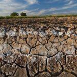 Green Deal, la Commissione avvia una consultazione pubblica contro il degrado del suolo