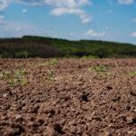 La PAC non contribuisce abbastanza a mitigare l'erosione del suolo.