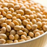 Soia Ogm, consultazione aperta per il rinnovo dell'autorizzazione di una variante per alimenti e mangimi