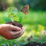 Biodiversità e conservazione specie, l'Unione Europea manca l'obiettivo per il 2020