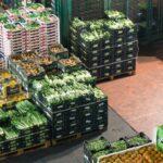 Pratiche commerciali sleali, ok al decreto per recepire la direttiva Ue. Esulta la filiera agroalimentare italiana