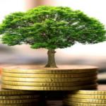 I costi della transizione ecologica non devono ricadere su consumatori ed aziende