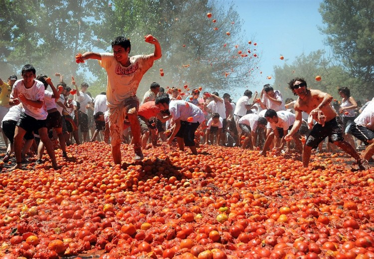 pomodori guerra