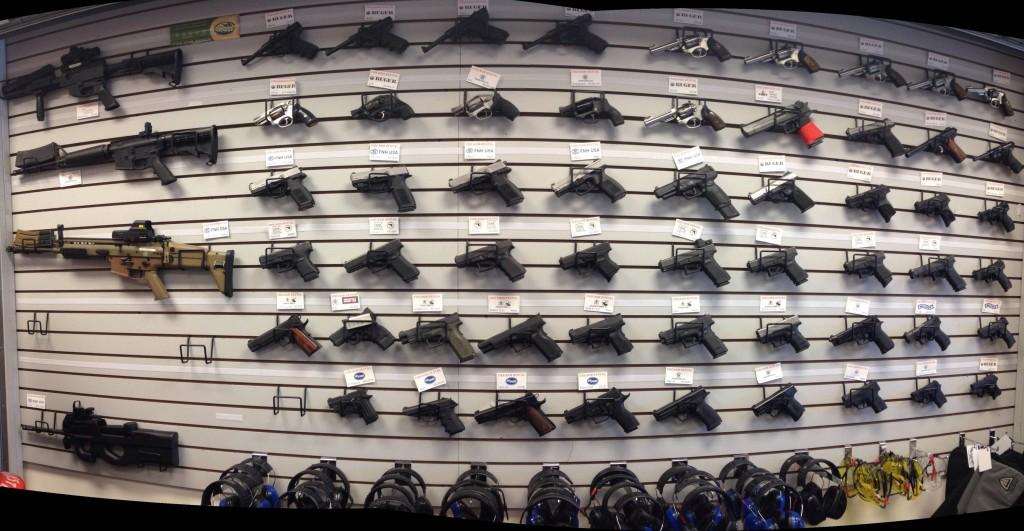 Direttiva armi, parlamento europeo, caccia
