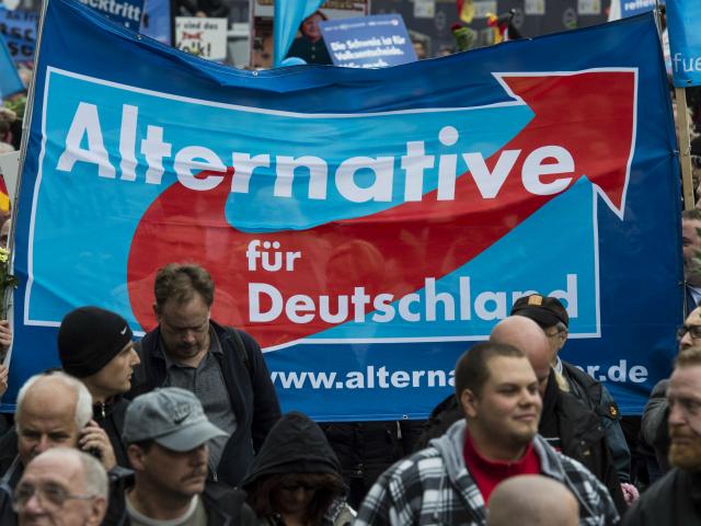 Germania, elezioni, afd, cdu, merkel