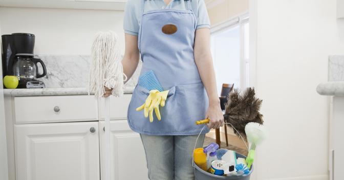 lavoro domestico, parlamento europeo