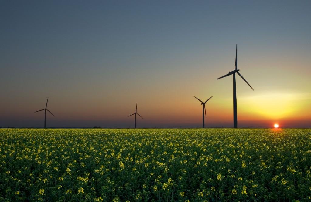 energie rinnovabili, energia eolica
