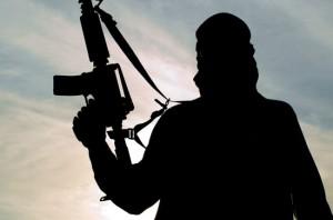 Eurpol ue terrorismo lupi solitari