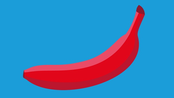 afd-logo-banane-100~_v-img__16__9__l_-1dc0e8f74459dd04c91a0d45af4972b9069f1135