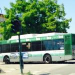 autobus green