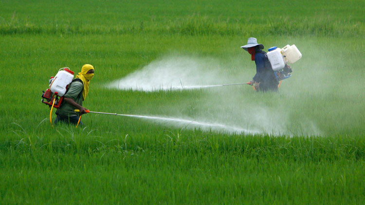 pesticida, emissioni, ambiente